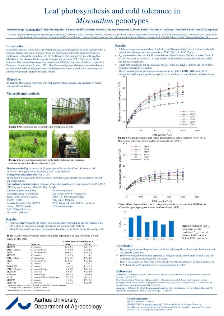 leaf photosynthesis and cold tolerance in miscanthus genotypes n.