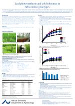 leaf photosynthesis and cold tolerance in miscanthus genotypes