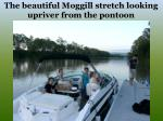 the beautiful moggill stretch looking upriver from the pontoon