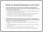 what do goals objectives look like