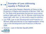 examples of laws addressing equality in political life