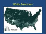 white americans