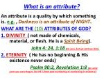 what is an attribute