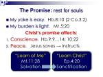 the promise rest for souls1