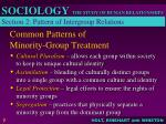common patterns of minority group treatment