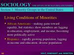 living conditions of minorities