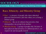 race ethnicity and minority group