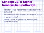 concept 39 1 signal transduction pathways