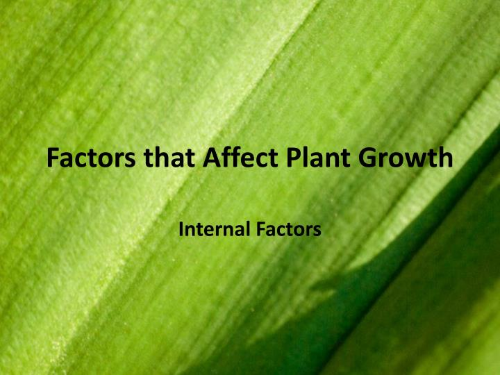 factors that affect plant growth n.