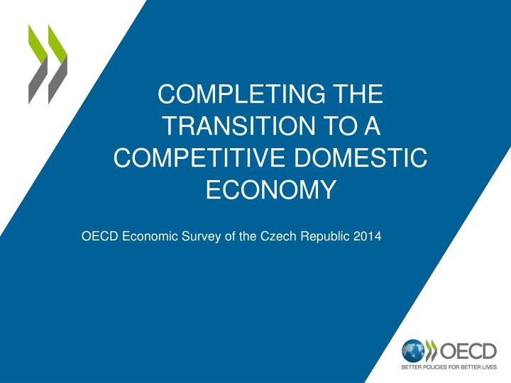 completing the transition to a competitive domestic economy n.