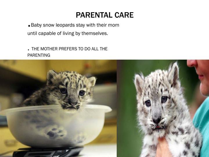 Parental care