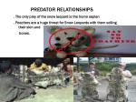 predator relationships