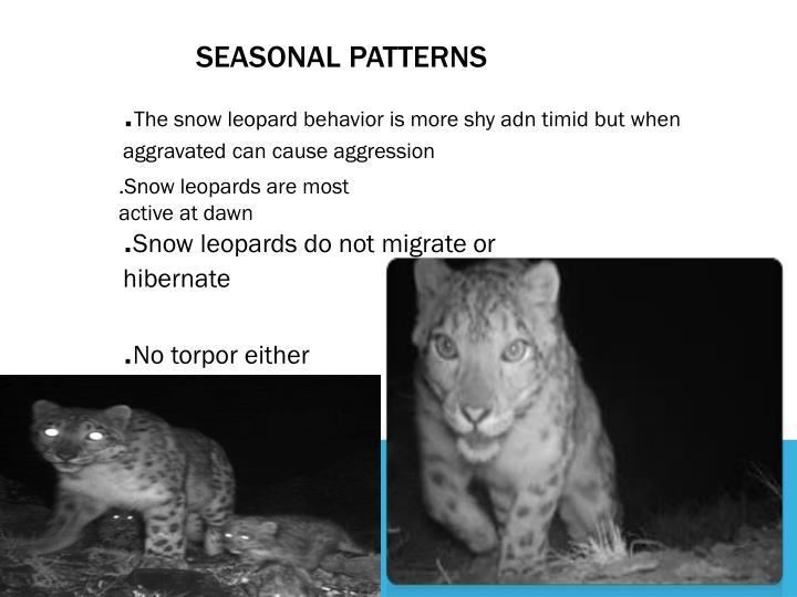 Seasonal patterns