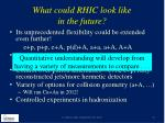 what could rhic look like in the future