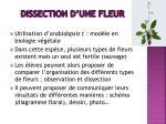 dissection d une fleur