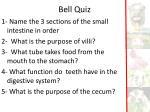 bell quiz1