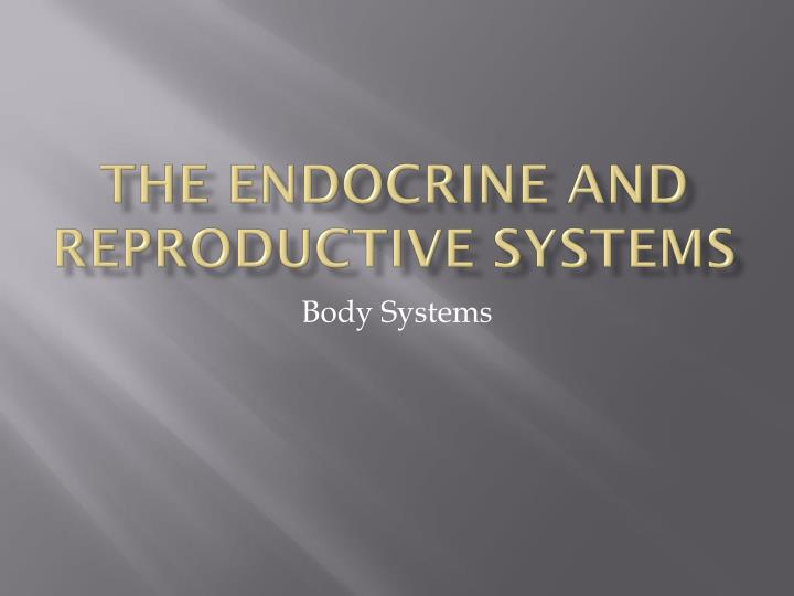 the endocrine and reproductive systems n.