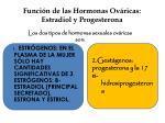 funci n de las hormonas ov ricas estradiol y progesterona