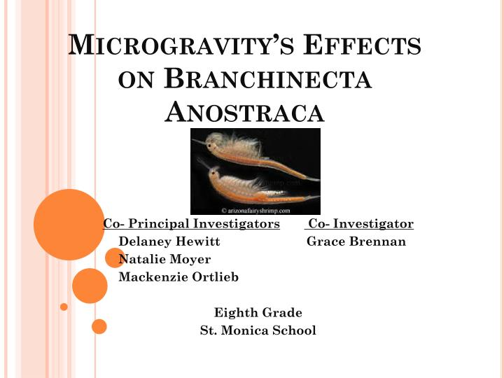 microgravity s effects on branchinecta anostraca n.