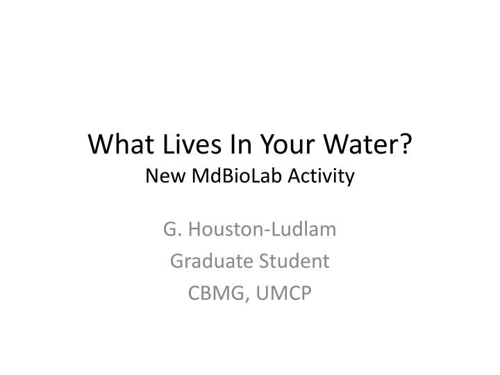 what lives in your water new mdbiolab activity n.