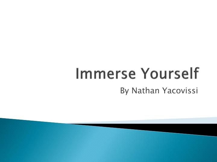 immerse yourself n.