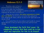 hebrews 12 1 3