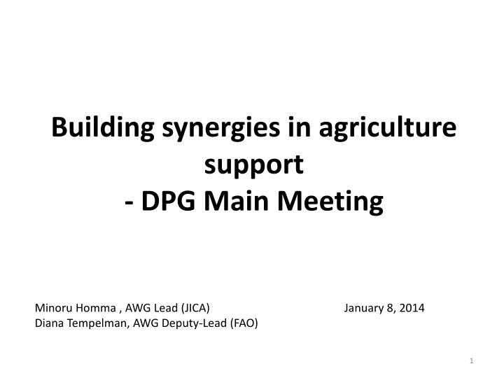 building synergies in agriculture support dpg main meeting n.