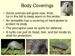 body coverings