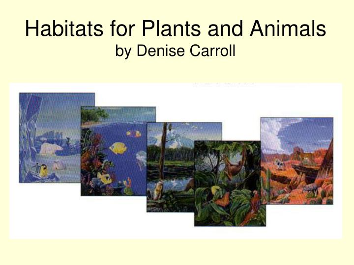 habitats for plants and animals by denise carroll n.