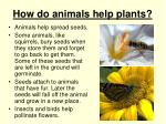 how do animals help plants