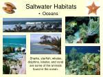 saltwater habitats