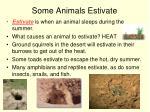 some animals estivate