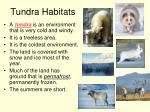 tundra habitats