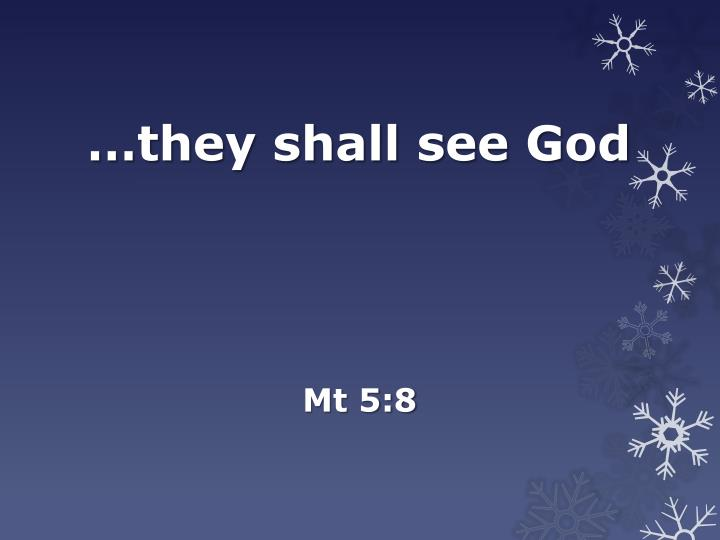they shall see god n.