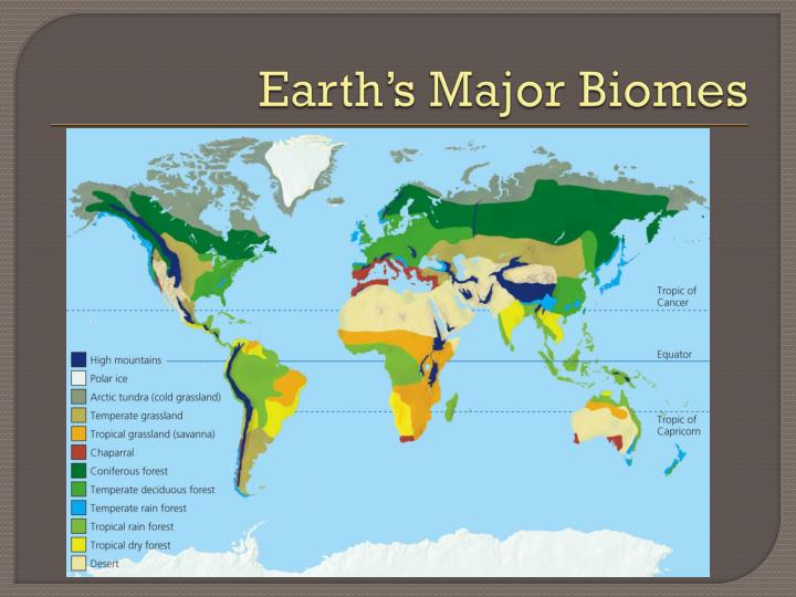 Earth s major biomes