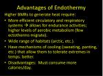 advantages of endothermy