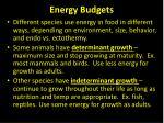 energy budgets