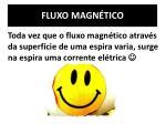 fluxo magn tico1