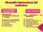 dimensi n internacional del curr culum5