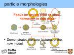 particle morphologies2