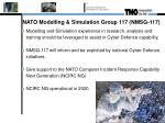 nato modelling simulation group 117 nmsg 1176