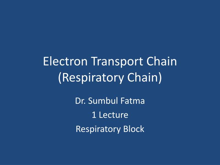 electron transport chain respiratory chain n.