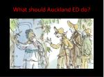 what should auckland ed do