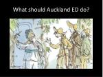 what should auckland ed do4