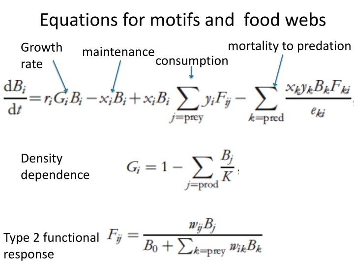 Equations for motifs and  food webs