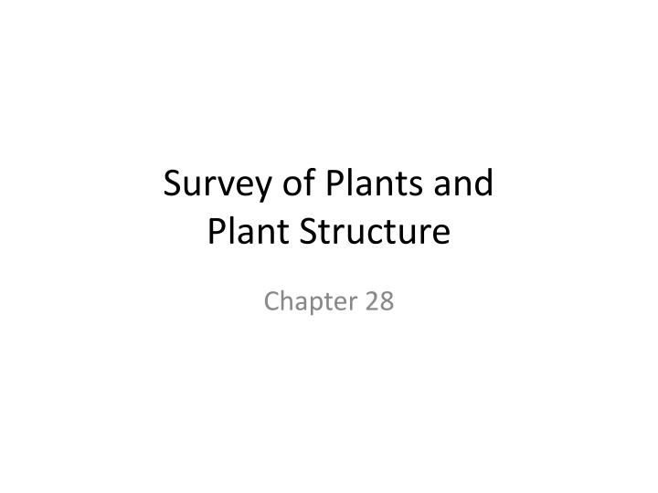 survey of plants and plant structure n.