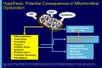 hypothesis potential consequences of mitochondrial dysfunction