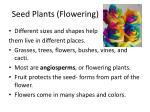 seed plants flowering