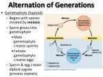 alternation of generations1