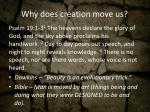why does creation move us
